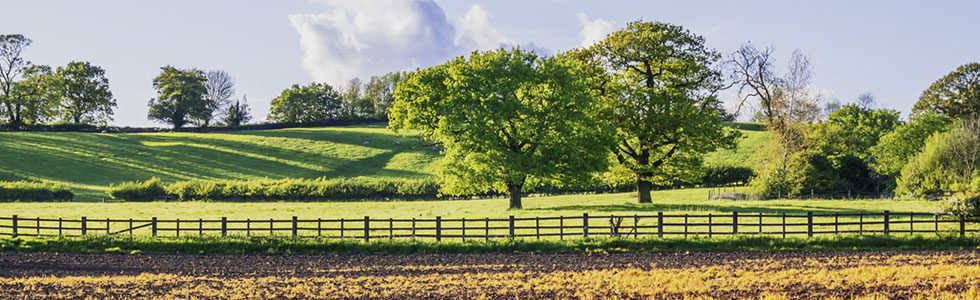 Real Estate Appraisals for Farms, Land, Ranches